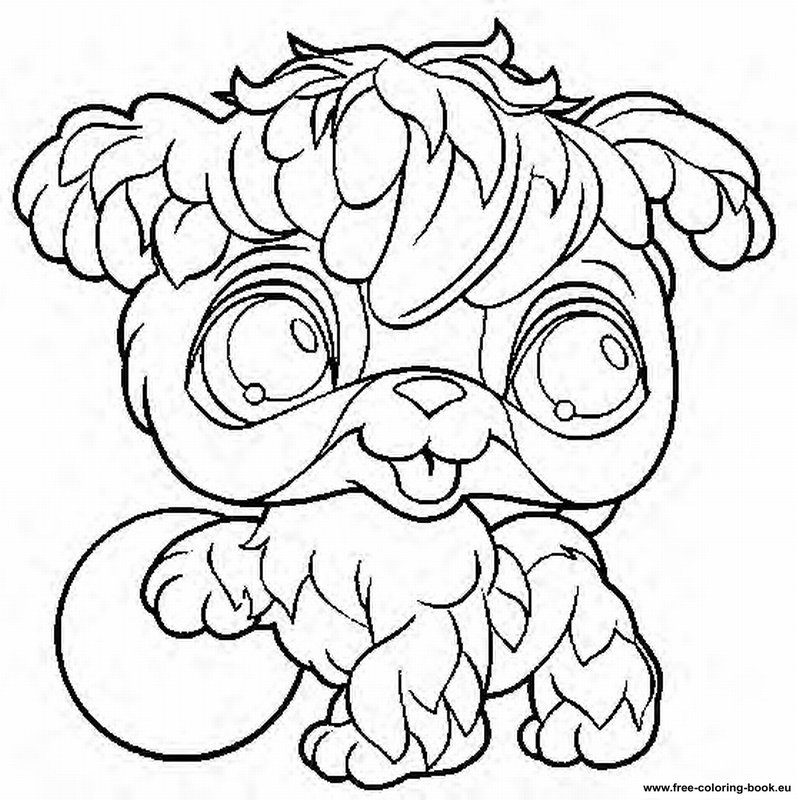 Littlest Pet Shop color page - Coloring pages for kids - Cartoon ... | 800x797